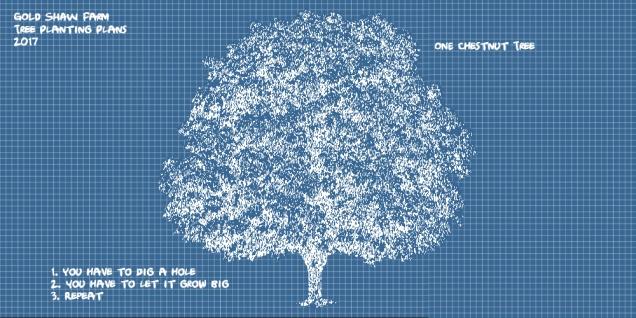 TreePlansSplash
